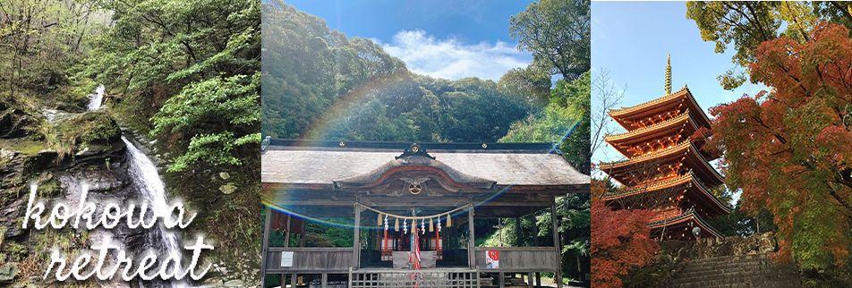 高知の豊かな自然と人の和がお出迎え 癒しのリトリートハウス 「ここ和」  田村ひとみ